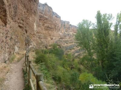 Hoces Río Duratón - Villa Sepúlveda; madeira senderismo senderismo en jaca